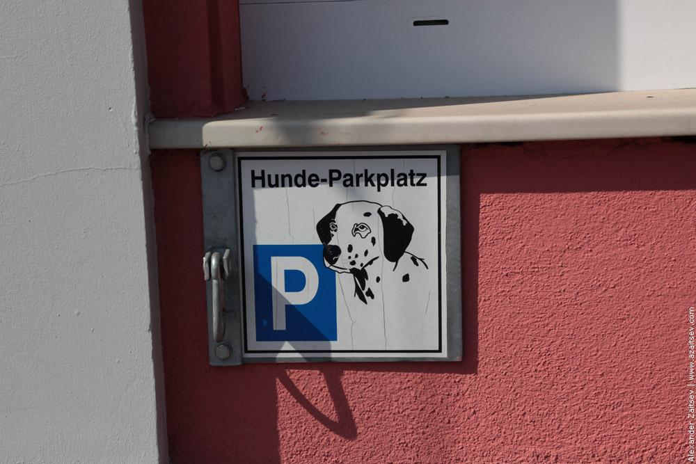 место для собак