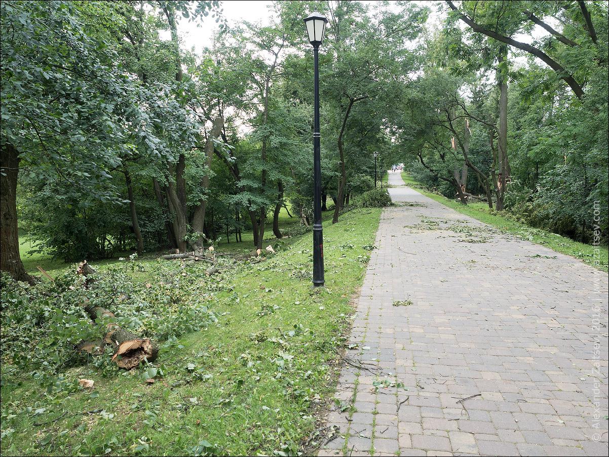 Лошицкий парк после бури