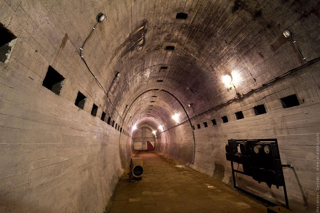 тоннели лагеря дождевого червя