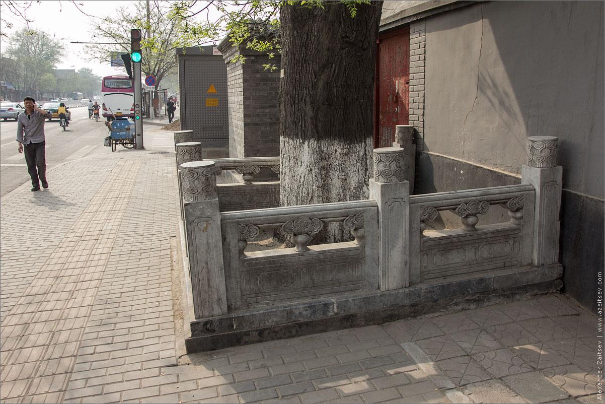 ограждения деревьев в пекине